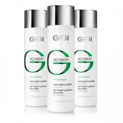 PUHASTUSGEEL 250ML GIGI RECOVERY PRE&POST